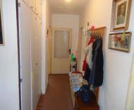 Ponúkame na predaj veľký 3.izb. byt v Haliči.