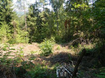 Predáme pozemok v atraktívnom prostredí - Maďarsko - Telkibánya
