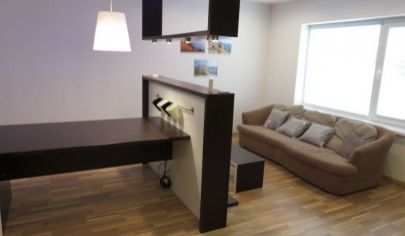 MARTIN rekonštruovaný 2 izbový byt 80m2 s terasou, Podháj