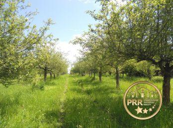 Na predaj ovocný sad so zrubovou chatkou v Uhrovci, časť Látkovce pri Bánovciach n/B.