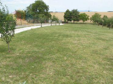 Pozemok pre rodinné domy Topoľčany-Veľké Bedzany, 726m2