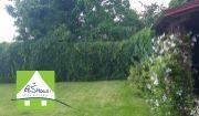 PREDAJ - novostavba dva RD bungalovy Hrubý Šúr