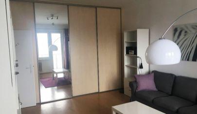 Na prenájom 1,5-izbový byt s loggiou, Súmračná Ružinov