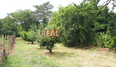 REALFINN EXKLUZÍVNE PREDAJ - záhrada 20 á v Nových  Zámkoch