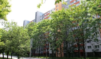PREDANÉ: na predaj slnečný 2i byt, 3./12p., výťah, VÝBORNÁ DISPOZÍCIA, Petržalka - Osuského ul.