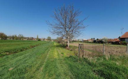 Exkluzívne na predaj veľký rovinatý pozemok pre rodinné domy Čab - Nitra