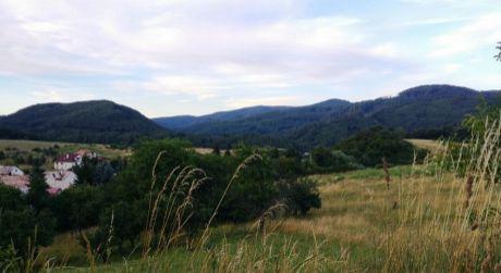 Predaj pozemkov v obci Breziny