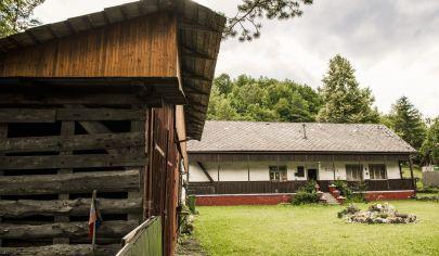 VALASKÁ BELÁ chata s pozemkom 11286m2, okres Prievidza