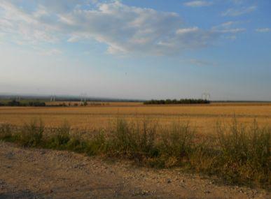 Maxfinreal ponúka - orná pôda Skalica