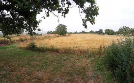 DOM-REALÍT ponúka na predaj pozemok o výmere 4300 m2, v obci Tureň