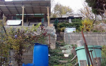 Záhrada s pozemkom 400 m2 a záhradnou chatkou, Banská Bystrica – 12 000€