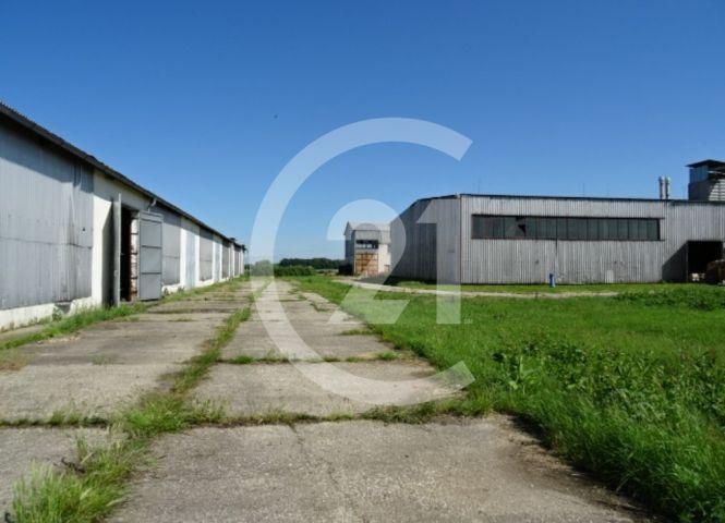 skladovacie - Rastislavice - Fotografia 1