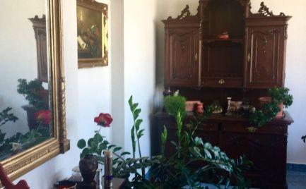 Veľkometrážny 5 izbový rodinný  s veľkým pozemkom vhodný aj na podnikateľké účely tesne pri hrádzi v Hamuliakove.