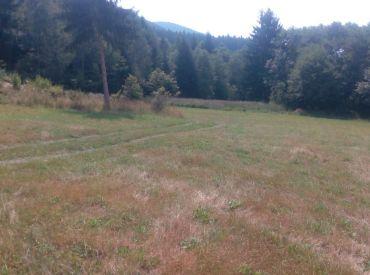 Na predaj pozemok pod lesom v Turí 4383 m2