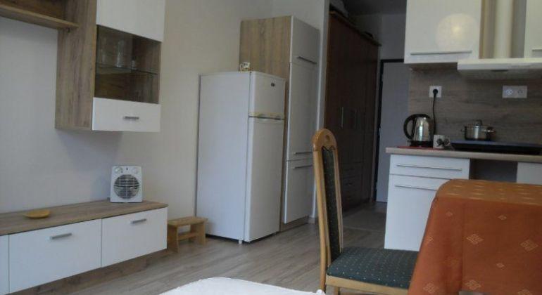 Prenájom - zariadený 1 izbový byt s balkónom v novostavbe Slnečnice-mesto, Bratislava-Petržalka, ulica Zuzany Chalupovej