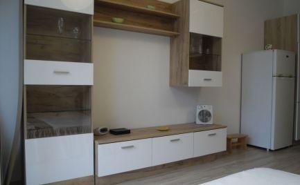 Na prenájom nový zariadený 1 izbový byt s balkónom Slnečnice Petržalka