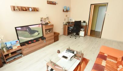APEX reality - 2i. byt s loggiou na Nábr. A. Hlinku po čiastočnej rekonštrukcii, 49 m2, klíma
