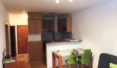 Pekný 2-izbový byt s loggiou v novostavbe v Ružinove