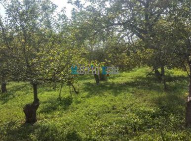 MAXFIN REAL predáme pozemok v širšom centre obce 6400m2 na stavbu rodinných domov Čeľadice 15km od NR