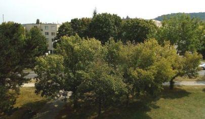 Veľký 4 izbový byt s loggiou v Dúbravke