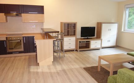 Na prenájom! 2-izbový byt 52 m2 v centre Trenčína, ul. Hviezdoslavova