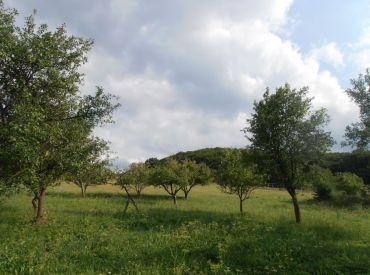Stavebný pozemok 1319m2 na chatu/rodinný dom s krásnym výhľadom, STARÁ LEHOTA