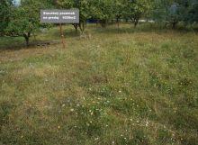 Pozemok pre výstavbu  rodinného domu   1 000 m2