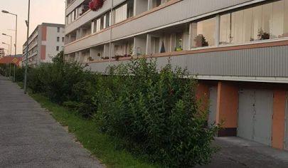 Hľadám 2 izbový byt v Ba-Rača,Krasňany