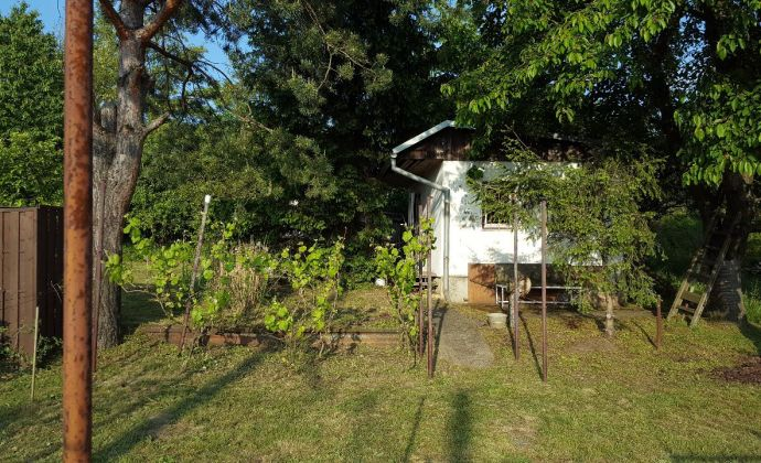 PREDAJ, záhrada s chatkou, Devínske jazero
