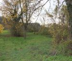 Pozemok / orná pôda, 3871 m2, Beckov