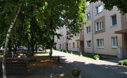 Ponúkame na predaj útulný, prerobený, kompletne zariadený 3-izb. byt s balkónom vo vyhľadávanej lokalite Senca.