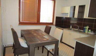 TURANY 1 izbový byt 38,50m2, Drevina
