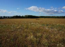Rekreačný pozemok na Z.Šírave - Lúč