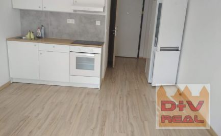 D+V real ponúka na prenájom: 1 izbový byt, garsónka, Zuzany Chalupovej, Slnečnice, Bratislava V, Petržalka, nezariadený, loggia, pri zastávke, dobrá občianska vybavenosť, novostavba