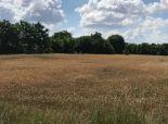 Predaj pozemku v tichom prostredí v rozlohe 52,67á v obci Bellova Ves