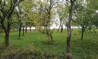 Krásny pozemok v tichom prostredí Podbranču 741 m2.