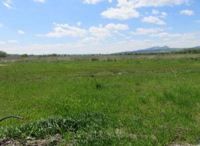 Stavebné pozemky na predaj, Košťany nad Turcom, výmera od 500 m2,