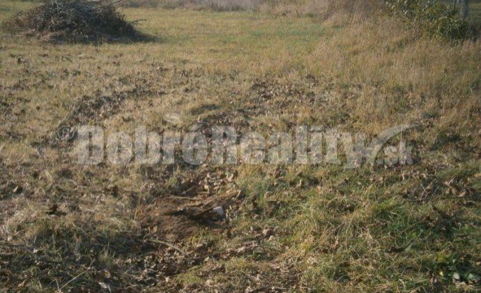 EXKLUZIVNE !..pozemok v obci Lužianky