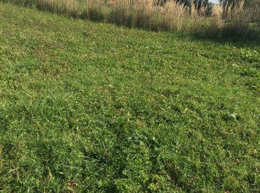 Predaj pozemku na okamžitú výstavbu v obci Lietavska Závadka, 523 m2  cena: 33.000 €