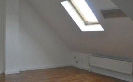PRENÁJOM  5 izbový priestranný RD vhodný na podnikanie aj bývanie NIVY Votrubova EXPIS REAL