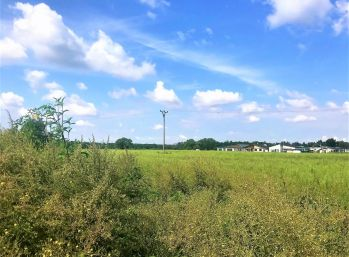 ***NA PREDAJ: Predám pozemok o výmere 846 m2  v obci Malé Leváre**!