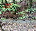Rekreačný pozemok v Antonstálskej doline, Nemšová - na predaj