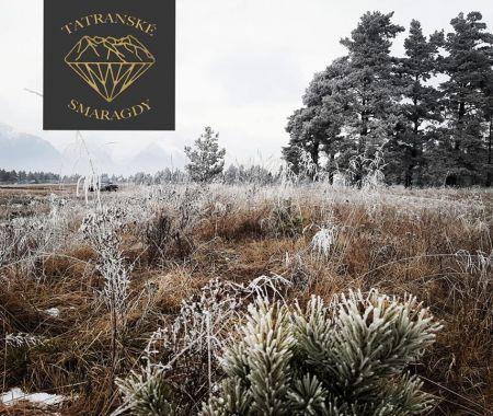 Stavebný pozemok s lesíkom, 4683 m2, Tatranské smaragdy - pri Mlynici