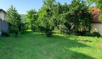 Na predaj pozemok, Stupava, Lesná.