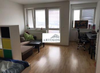 Velký 1 izbový byt s výhľadom