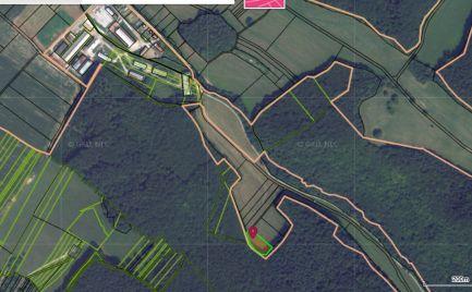 Rekreačný pozemok Klobušice, pod lesom, 2404 m2
