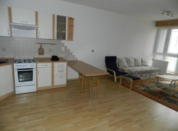 Veľký 2 izbový byt s garážovým státim