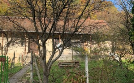 MAĎARSKO - VÁGÁSHUTA GAZDOVSKÝ 2 IZBOVÝ RD V POVODNOM STAVE, POZEMOK 1800 M2