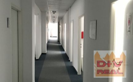 D+V real ponúka na prenájom: kancelárie, Štúrova ulica, kuchynka a toalety na chodbe, od 17,50m2, viz inižšie v texte