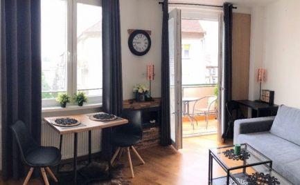 PRENÁJOM 1 izbový designový byt s krbom a výhľadom na hrad pri Eurovei Bratislava Staré Mesto EXPIS REAL